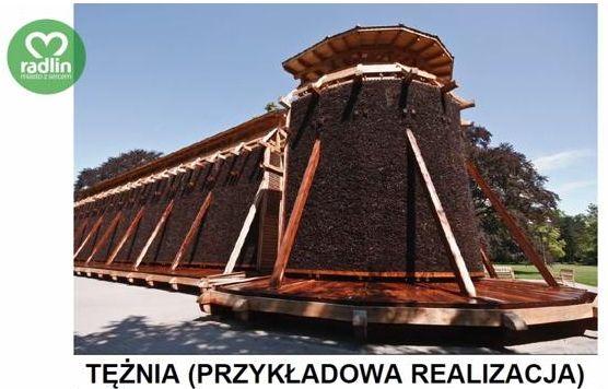 Budowa tężni solankowej to inwestycja, która ucieszy nie tylko mieszkańców Radlina.
