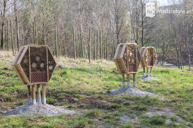 Widzieliście już domki dla owadów w Rodzinnym Parku Rozrywki?