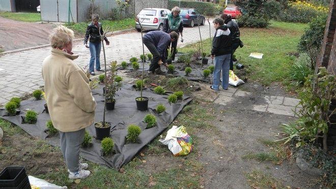 Radlin: mieszkańcy sami wyremontowali klatkę w bloku, UM Radlin