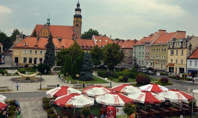 Wobec braku zainteresowania dzierżawa ogródków, prezydent Wodzisławia zdecydował się na obniżeniu czynszu dzierżawczego